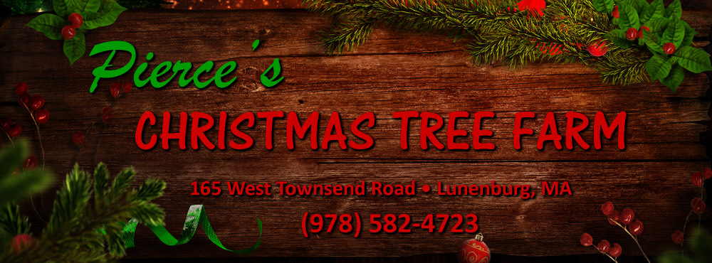 Pierce's Christmas Tree Farm Lunenburg MA | Pierce's Christmas Tree Farm Worcester MA